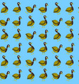 seamless pattern with wild duck vector image