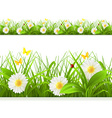 Spring green grass seamless border Detailed