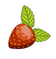 strawberry berry icon vector image vector image