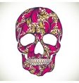 with hand drawn skull vector image vector image