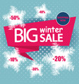 big winter sale banner and poster template design vector image vector image