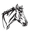 decorative portrait of foal vector image vector image