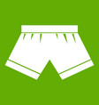 male underwear icon green vector image vector image