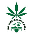 medical cannabis vector image vector image