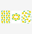 seamless patterns with ripe lemons set vector image vector image