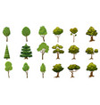 set of trees of various kinds cartoon style and vector image vector image