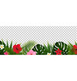 tropical flowers and palm leaf isolated vector image vector image