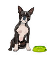 a of cute and kind dog with vector image vector image