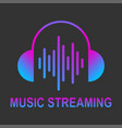 audio streaming logo music cloud logo vector image vector image