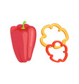 bell pepper pod isolated icon cartoon style vector image