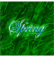 floral word spring over grass background vector image vector image