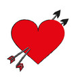 heart draw vector image vector image