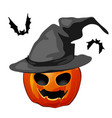 pumpkin in a witch hat and bats isolated on white vector image vector image