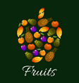 tropical fruits in a shape apple icon vector image vector image
