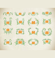 abstract elegance orange patter vector image vector image