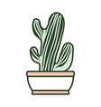 cartoon cactus in a pot vector image