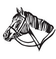 decorative portrait of horse in profil vector image vector image
