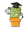 graduation cute cactus character cartoon vector image vector image