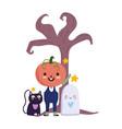 happy halloween pumpkin costume ghost cat dry vector image vector image