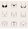 Sexy women bra and panties icons logos vector image vector image