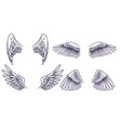 sketch angel wings hand drawn different wings vector image