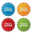 Colorful offer tags with texture set icon vector image vector image