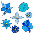 flowers design hand drawn vector image vector image