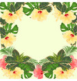 frame tropical flowers hibiscus vector image