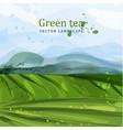green tea fields watercolor background vector image