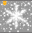 shine white snowflake with glitter isolated on vector image vector image