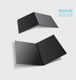 two black brochure design isolated on grey vector image vector image