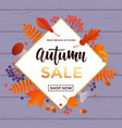 autumn gold sale text poster for september vector image vector image