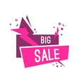 Colorful advertising flashed big sale banner vector image vector image