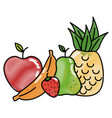 fruits food organic vector image vector image