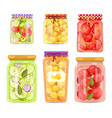 granny homemade fruit conserve and pickled veggie vector image
