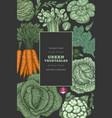 hand drawn vintage color vegetables design vector image