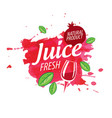 logo pomegranate juice splash on white vector image vector image