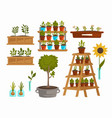 planting vegetables and trees plants and flowers vector image