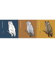 siberian eagle owl or bubo bubo sibiricus vector image vector image