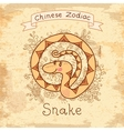 Vintage card with Chinese zodiac - Snake vector image vector image