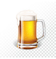 with fresh lager beer in a beer mug on vector image