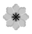 black and grey flower graphic vector image vector image