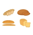 Bread baguette loaf set Bakery products vector image