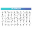collection with various kind tomatoes vector image