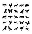 glyph animals vector image