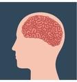 Human brain design
