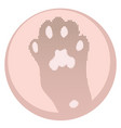 pink cats paw vector image vector image