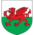 Wales vector image
