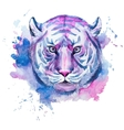 Watercolor raster tiger vector image