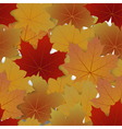 Seamless pattern from autumn maple leaves vector image